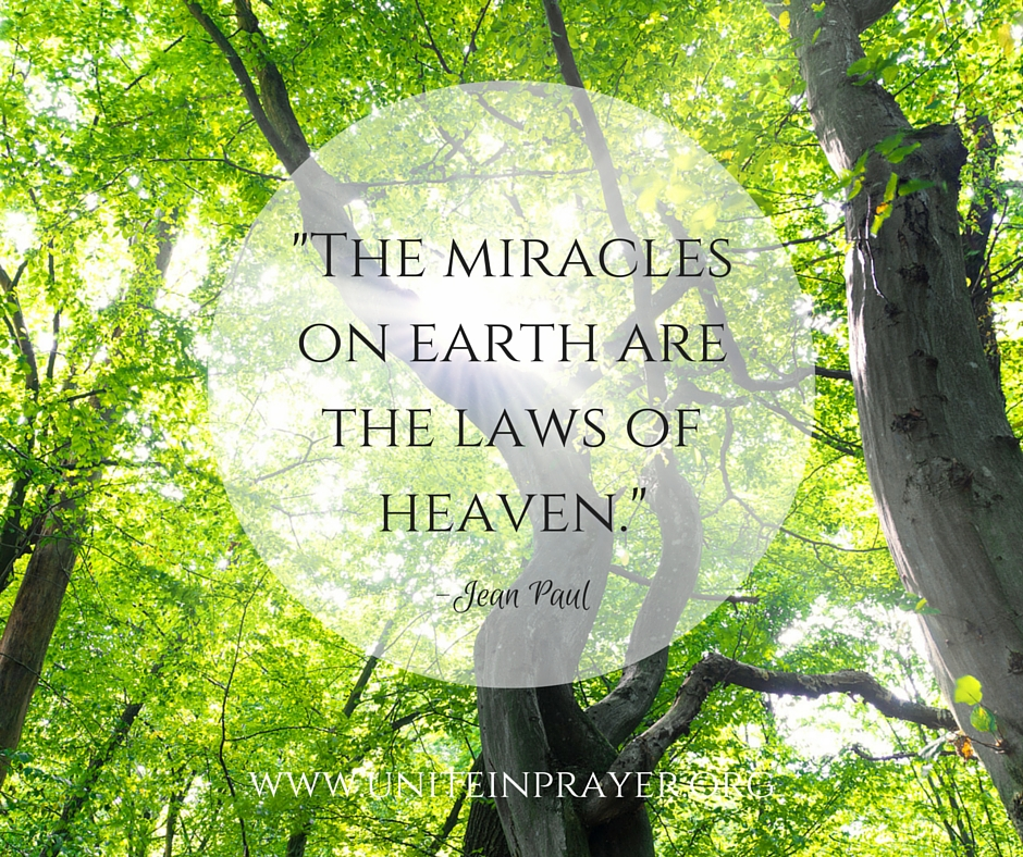 The miracles on earth are the laws of heaven